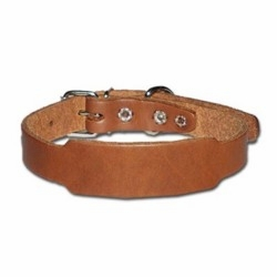 Beagle Collar 3/4 Inch Wide