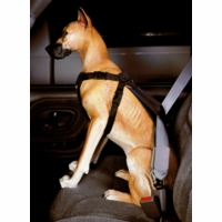 Car Harness for Dogs