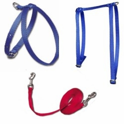 Cat Harnesses and Leads