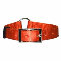 Center Ring Bravo Nylon Dog Collar 1 Inch Wide