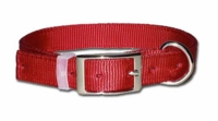 Dee in Front Bravo Dog Collar 1 Inch Wide