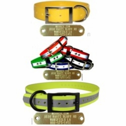 Dog Collars with Brass Name Plates Attached