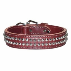 Dome Stud Leather Collar