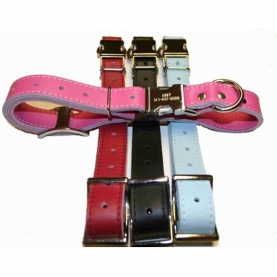 Engraved Buckle Leather ID Collar