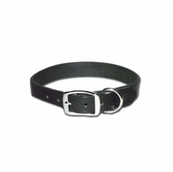 Flat Latigo Leather Dog Collars
