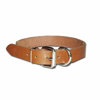 Front D Bully Dog Collar 3/4 Inch Wide