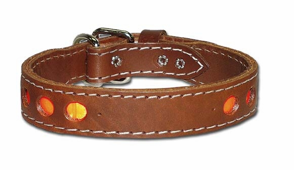 Inlaid Reflective Dog Collar 1-1/4 Inches Wide