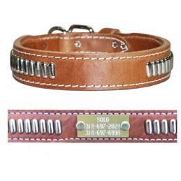 Leather Collar with Oblong Studs and Name Plate
