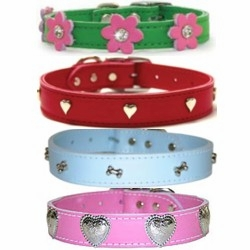 Leather Dog Collars with Ornaments