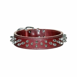 Heavy Duty Collar with Spikes 1-1/2 inch wide