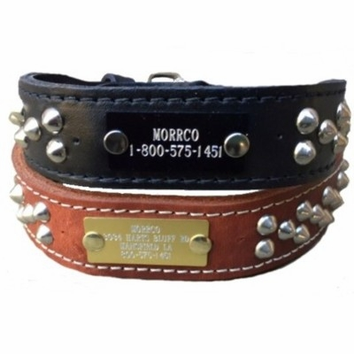 Leather Dog Collar with Studs and Name Plate