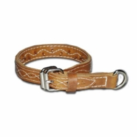Leather Force Dog Collar