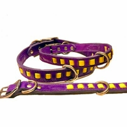 Louisiana Pride Purple and Gold Collar