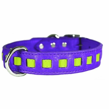 Louisiana Pride Purple Collar