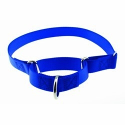 Martingale Training Collars