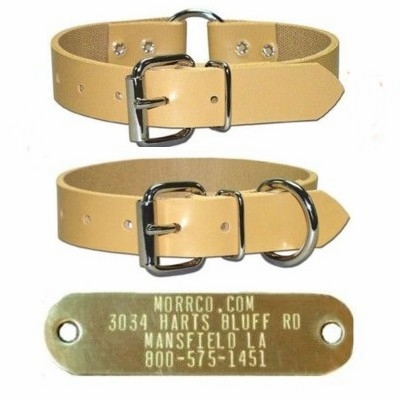 Perma Collar with Name Plate 1 inch wide