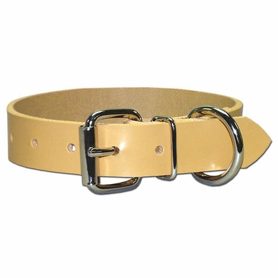Perma Regular Dog Collar 3/4 Inches Wide