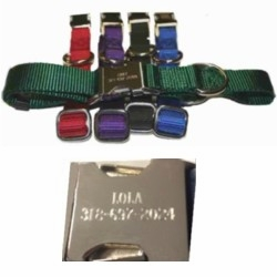 Personalized Metal Buckle Nylon Collars