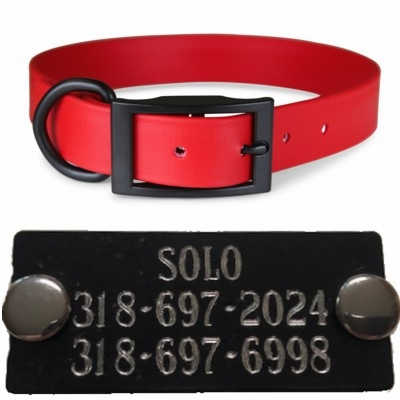 Pink or Red Zeta Dog Collar With Black Name Plate