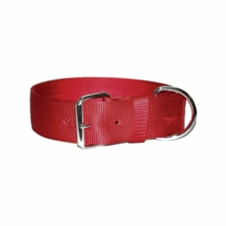 Regular Bravo Dog Collar 2 Inches Wide