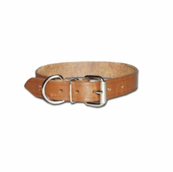 Regular Bully Collar 1 Inch Wide