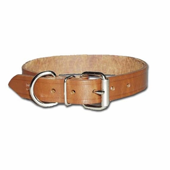 Regular Bully Dog Collar 3/4 Inch Wide
