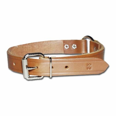 Ring in Center Dog Collar 1 Inch Wide