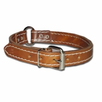 Ring-in-Center Two-Ply Leather Dog Collar 1 Inch Wide
