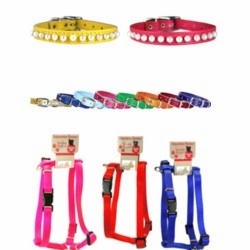 Dog Collars and Harnesses for tiny dogs