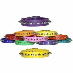 Spike and Stud Leather Dog Collars