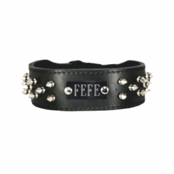Spiked Leather Dog Collar with Name Plate Space