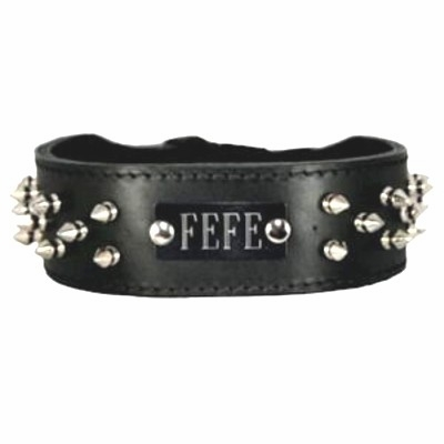 Spiked Leather Collar with Name Plate Space