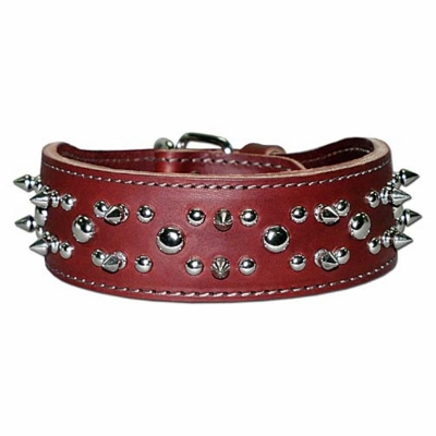 2 in wide Leather Collar with Spikes and Studs
