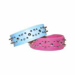 Spikes and Studs Leather Dog Collar 2 inches