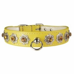 Starburst Rhinestone Dog Collar