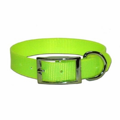 SunGlo Dog Collars 1 in wide