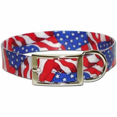 Sunglo USA Stars and Stripes Dog collar