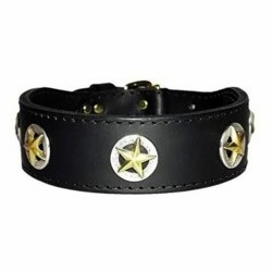 Texas Stars Leather Dog Collar