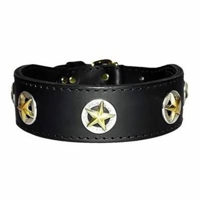 Texas Stars Leather Collar