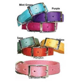 Vinyard Nylon Dog Collars 1 inch wide