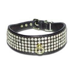Wide Collars with Rhinestones