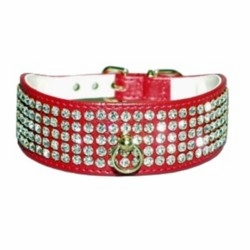 Wide Dog Collar with Rhinestones
