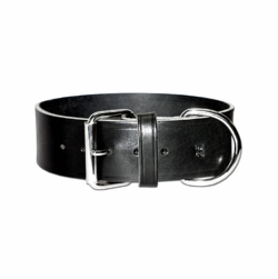 2 inch Wide 1 ply Latigo Leather Dog Collar