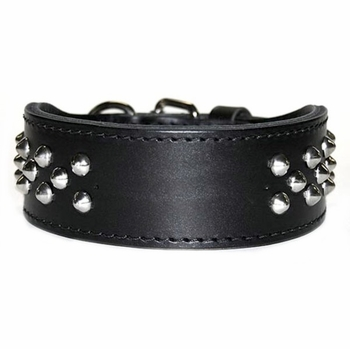 Wide Leather Dog Collar with Studs