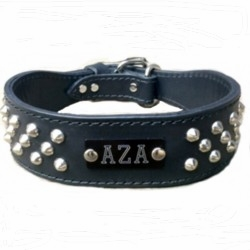 Wide Leather Dog Collar with Studs and Name Plate