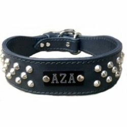 Wide Leather Collar with Studs and Name Plate