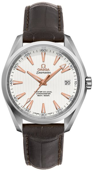 Omega Seamaster Aqua Terra Men's Watch 231.13.39.21.02.003
