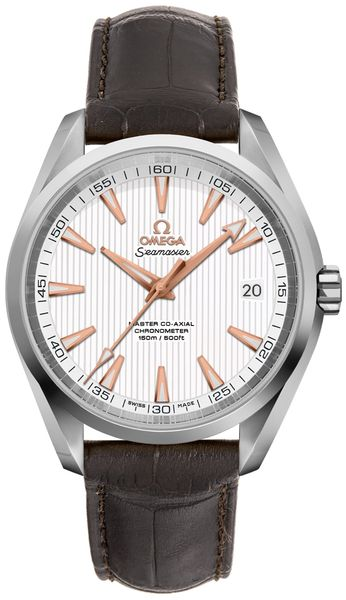 Omega Seamaster Aqua Terra Automatic Men's Watch 231.13.42.21.02.003