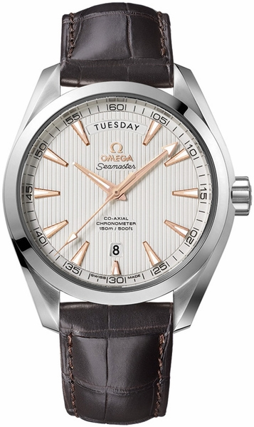 Omega Seamaster Aqua Terra Day Date Automatic Men's Watch 231.13.42.22.02.001