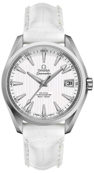 Omega Seamaster Aqua Terra Chronometer Silver Dial Men's Watch 231.10.39.21.02.001